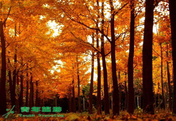 秋山自然生態山水一日游